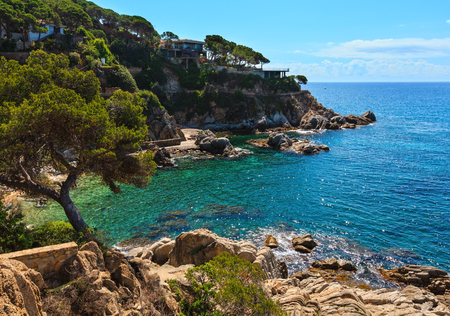 Summer sea rocky coast view with conifer trees and sunny sparkles on water surface (Catalonia, Spain).