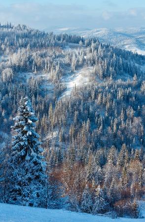The first shadows of setting sun on winter mountain slope (Skole Beskids, Lviv Oblast, Carpathians, Ukraine)