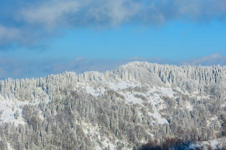 Winter Carpathian Mountains landscape with fir forest and shadow of cloud on slopes (Skole Beskids, Lviv Oblast, Ukraine).