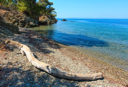 Morning summer Aegean Sea rocky coast landscape with pine trees on shore. View from beach, Sithonia (near Ag. Kiriaki), Halkidiki, Greece.