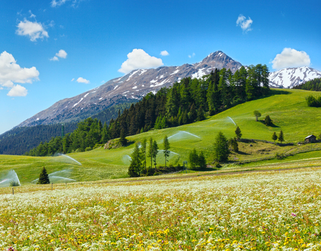 dandelion snow: Irrigation water spouts in Summer Alps mountain  (Italy).  Blue sky with some cumulus clouds. Stock Photo