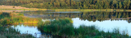 Evening summer lake landscape with plants reflections on water surface (Shklo, Lviv Oblast, Ukraine). Three shots stitch high-resolution panorama.