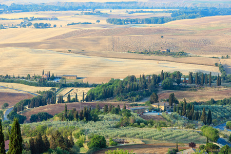 olive green: Beautiful landscape of Tuscany summer morning countryside from Pienza town walls. Typical for the Italy region Toscana farm houses, hills, wheat field, olives garden, vineyards, cypress passes.