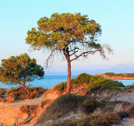 Aegean sea coast landscape, sunset view from Karidi beach (Chalkidiki, Greece).