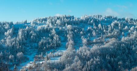 Winter Carpathian Mountains landscape with fir forest and lonely house on slopes (Skole, Lviv Oblast, Ukraine). Two shots stitch high-resolution panorama.