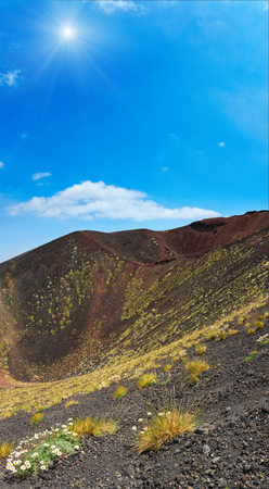 erupting: Flowers and plants on summer sunshiny Etna volcano mountain craters, Sicily, Italy. Four shots stitch image.