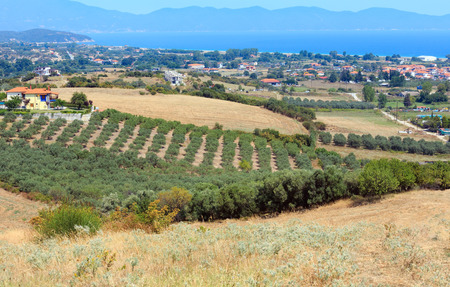 Beautiful summer sea coast view with rural scene (Athos Peninsula, Halkidiki, Greece).