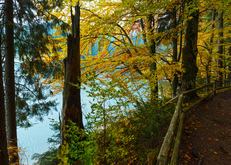 National Nature Park Synevyr autumn landscape. Is largest lake in the Carpathian Mountains of Ukraine (Mizhhiria, Zakarpattia Oblast). 스톡 콘텐츠