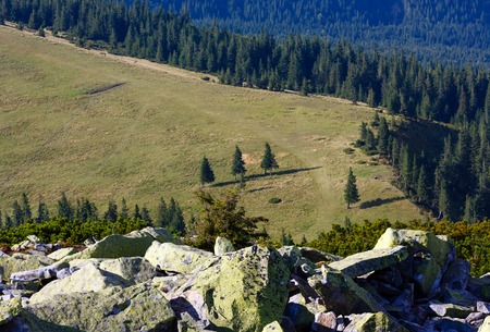 Summer view to mountain plateau from stony summit of Homiak Mount (Gorgany, Carpathian, Ukraine). Stock Photo