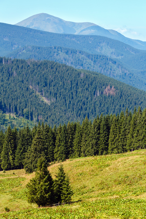 Summer Chornohora mountain ridge view from Vesnjarka plateau (Carpathian, Ukraine). Stock Photo