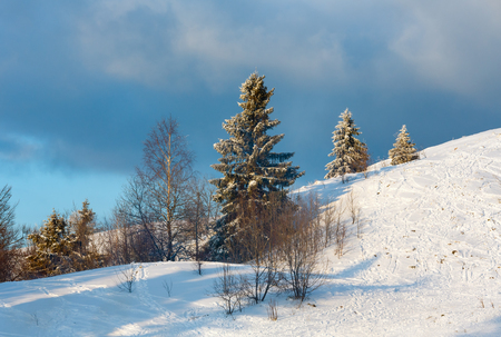 Evening winter calm mountain landscape with beautiful frosting trees and ski track trace through snowdrifts on mountain slope (Carpathian Mountains, Ukraine) Stock Photo