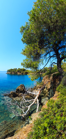 Morning summer Aegean Sea rocky coast landscape with pine trees on shore, Sithonia (near Ag. Kiriaki), Halkidiki, Greece. Two shots stitch image. Stock Photo