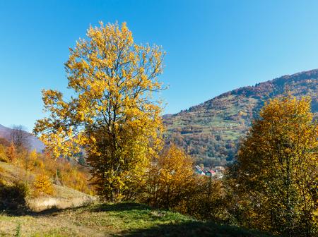 Autumn Carpathian Mountains landscape with multicolored trees and mountain village outskirts on slope (Rakhiv district, Transcarpathia, Ukraine).