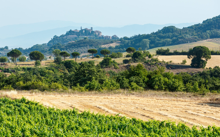 Beautiful landscape of Tuscany summer morning countryside in Montepulciano region.