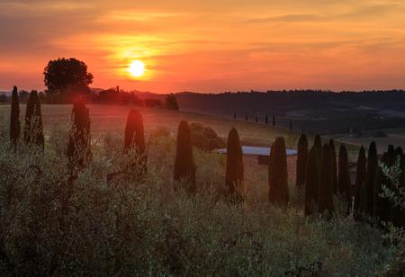 Beautiful landscape of Tuscany summer sunrise countryside, Italy. Stock Photo