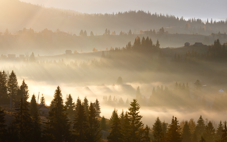 First sunrise rays of sun and shadows through fog and trees on slopes. Banco de Imagens