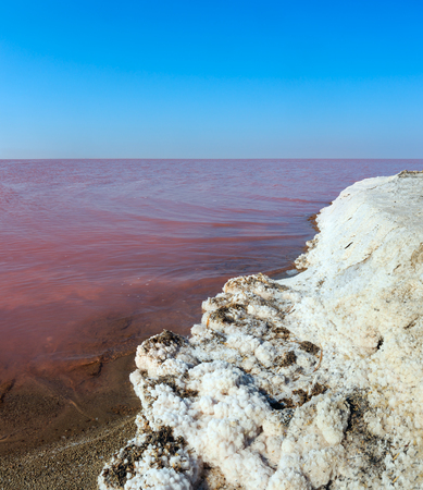Pink extremely salty Syvash Lake, colored by microalgae with crystalline salt depositions. Also known as the Putrid Sea or Rotten Sea. Ukraine, Kherson Region, near Crimea and Arabat Spit.