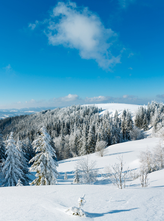Winter calm mountain landscape with beautiful frosting trees and snowdrifts on slope (Carpathian Mountains, Ukraine) Stock Photo