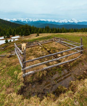 Spring Carpathian mountains landscape with snow-covered tops of Chornohora ridge in far, Ukraine.  Fenced farming area with water spring and drinker. Cow skull on wooden fence. Banque d'images - 109401533