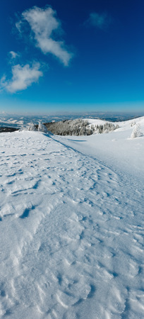 Winter calm mountain landscape with beautiful frosting trees and snowdrifts on slope (Carpathian Mountains, Ukraine). Composite image with considerable depth of field sharpness.