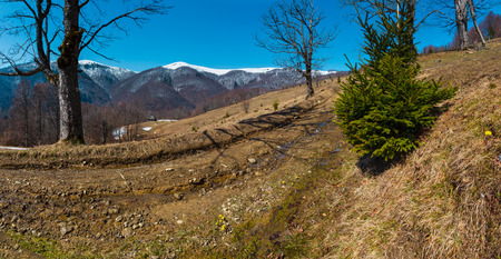 Early spring Carpathian mountains plateau landscape with snow-covered ridge tops in far, Ukraine. 版權商用圖片