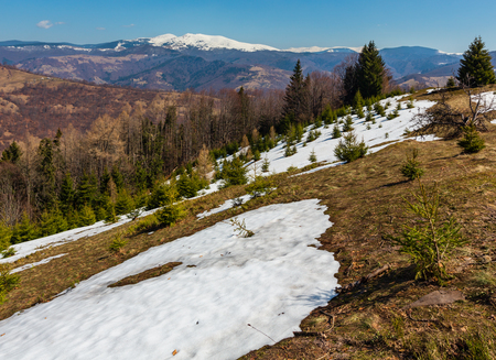 Early spring Carpathian mountains plateau landscape with snow-covered ridge tops in far, Ukraine. Archivio Fotografico