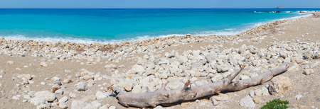Beautiful summer Lefkada coast panorama with dry trunk of tree on stony beach (Greece, Ionian Sea)