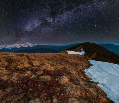 Night spring Carpathian mountains landscape and starry Milky Way in sky, Ukraine, Europe.