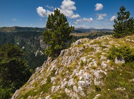Picturesque summer mountain landscape of Tara Canyon in mountain Durmitor National Park, Montenegro, Europe, Balkans Dinaric Alps, UNESCO World Heritage. 写真素材