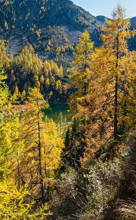 Sunny autumn alpine view. Peaceful mountain forest lake with clear transparent water and reflections. Untersee lake, Reiteralm, Steiermark, Austria. Stockfoto