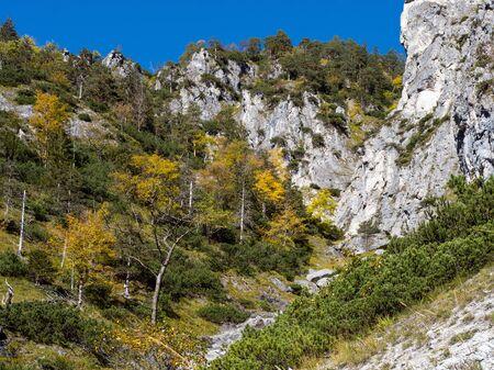 Sunny idyllic colorful autumn alpine scene. Peaceful rocky mountain view from hiking path near Almsee lake, Upper Austria.