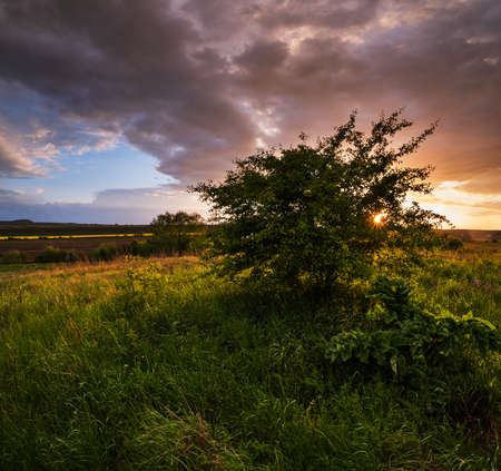 Spring evening meadow after rain, cloudy sunset sky with sunshine through bush branches, rural hills and fields in far. Natural seasonal, weather, climate, travel, countryside beauty concept scene.