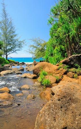 na: Hanakapiai Creek on the Na Pali Coast