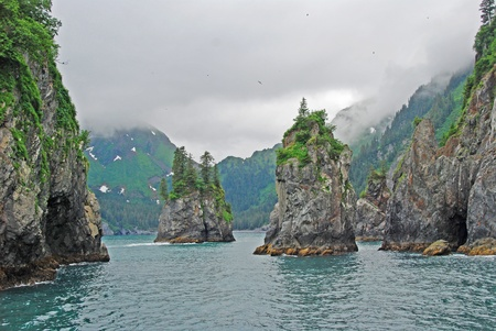 Porcupine Bay in Kenai Fjords National Park Stock Photo - 11980278