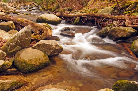 Abrams Creek in The Smoky Mountains in the spring photo