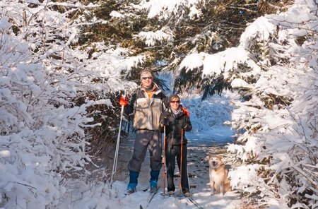 Man and woman skiing in Sleepy Hollow State Park In Michigan photo