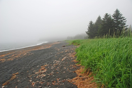 Fog on the Coast of Kodiak Island in Alaska Stock Photo - 12209858