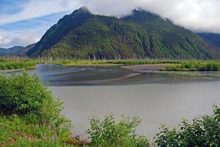 These mountains are taken in the Copper River Delta near Cordova, Alaska