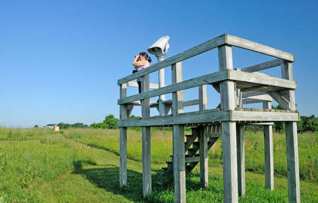 birdwatcher: Birdwatcher observing birds on a wildlife viewing platform