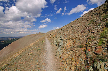 national scenic trail: Scenic point trail in Glacier National park