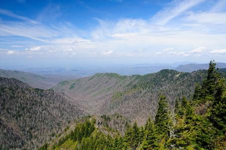 Un panorama spectaculaire sur l'Appalachian Trail près oignon Charlie Banque d'images - 12579480
