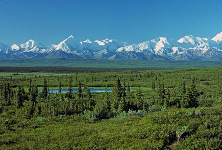 tiaga: Early morning shadows on the Alaska range taken from near Wonder Lake in Denali National Park
