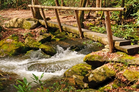 Foot bridge crossing Wolf Creek in the Smoky Mountains photo