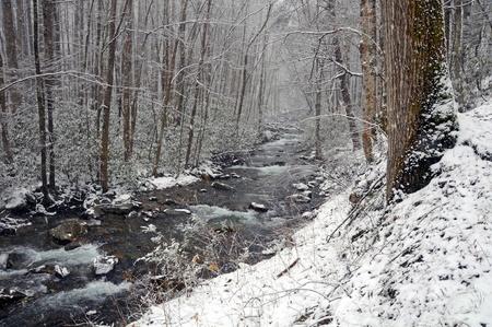 スモーキー山脈でビッグ クリークの早いばねの雪の嵐