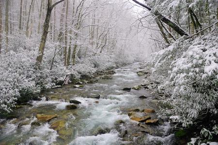 ビッグ クリーク、スモーキーズ山中春の雪嵐の中