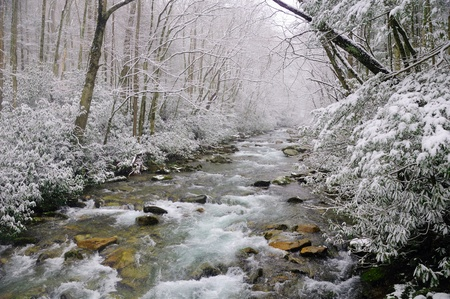 Big Creek in the Smokies Mountains during a spring snow storm