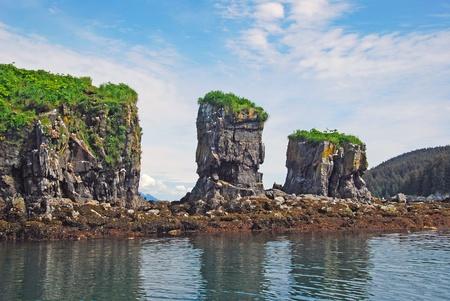 Rocher Nid d'oiseau par l'île de Kodiak Banque d'images - 13329504