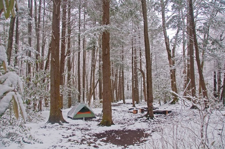 Campsite in a in the Smoky mountains after a spring snow photo