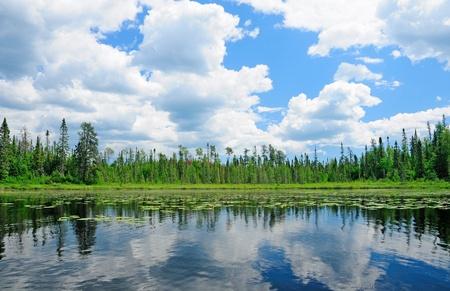 Réflexions sur la baie Cross Lake, dans le bois du nord Banque d'images - 13375528