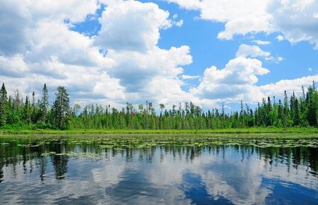 north woods: Reflections on Cross Bay Lake in the North Woods Stock Photo